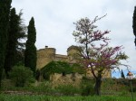 We spent a magnificent day at the Chateau de Lourmarin on Monday.