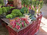 Aix has a daily vegtable market