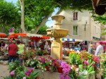 You'll find flowers (Cassis),