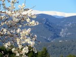 A hint of spring. Mont Ventoux, Province's highest peak from the village of Rousillon.