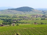 The wine country of Beaujolais in late spring.
